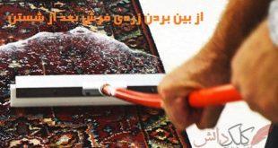 روش از بین بردن زردی فرش بعد از شستن